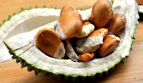 ăn hạt sầu riêng có tác dụng gì