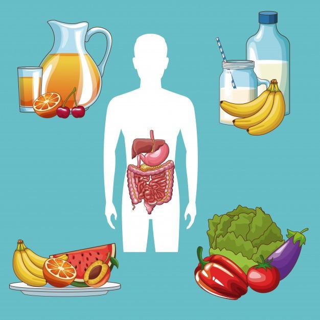 ăn gì tốt cho đường tiêu hóa
